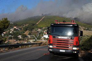 Στις φλόγες περιοχή της Λακωνίας