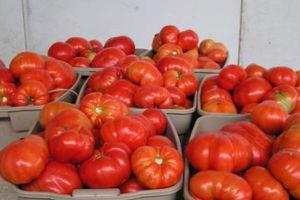 Κατασχέθηκε ένας τόνος ντομάτες στον Πειραιά