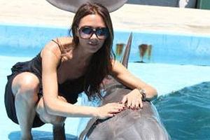 Η Victoria και το δελφίνι