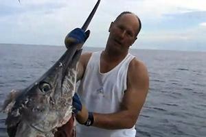 Χορηγούνται άδειες αλιείας για τόνο και ξιφία