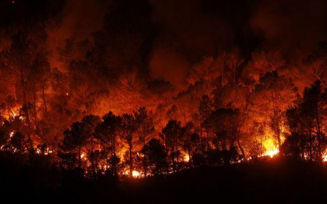 Μεγάλη πυρκαγιά κατακαίει δάσος στην Καταλονία