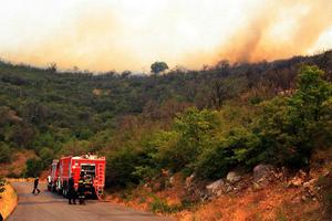 Πυρκαγιά στην Ασπροβάλτα Θεσσαλονίκης