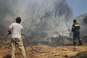 Τεράστια οικολογική καταστροφή από την πυρκαγιά στην Εύβοια