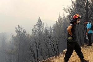 Αναζητούν έναν Λιθουανό για τη φωτιά στο Άγιο Όρος