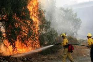 Φωτιά στο Πουρί του Πηλίου