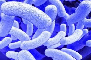 Φυσικό αντιβιοτικό «σκοτώνει» τη φυματίωση
