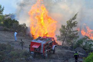 Ζημιές σε θερμοκήπια από τη φωτιά στο Ηράκλειο