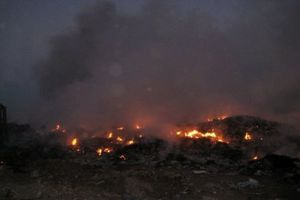 Πυρκαγιά σε τρία μέτωπα στις εκβολές του Αλφειού