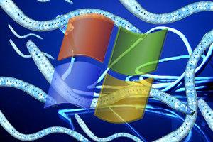Πειρατικές εκδόσεις των Windows περιέχουν «προεγκατεστημένους» ιούς