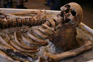 Εντοπίστηκαν οστά τριών ανθρώπινων σκελετών στην Γαύδο