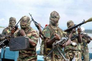 Η εξτρεμιστική οργάνωση Μπόκο Χαράμ κατέλαβε πόλη της Νιγηρίας
