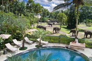 Το πάρκο των ελεφάντων