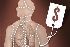 Έρευνα για το διεθνές λαθρεμπόριο οργάνων