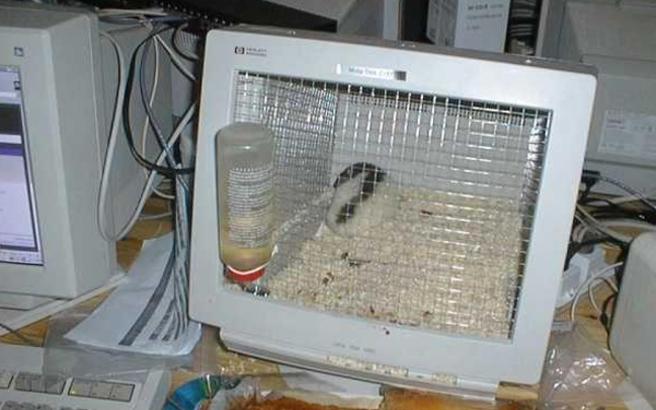 Υπολογιστές για όλες τις χρήσεις