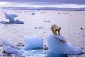ΟΗΕ: Ας σώσουμε τους ωκεανούς για να σώσουμε την ανθρωπότητα