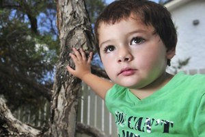 Bρήκε επτά φίδια στη ντουλάπα του 3χρονου γιου της