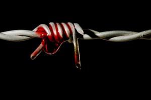 Αποδείξεις βασανιστηρίων στις συριακές υπηρεσίες ασφαλείας