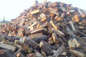 Τους έκλεψαν 2 τόνους ξύλα ενώ αρραβωνιάζονταν