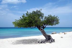 Οι καλύτερες παραλίες σύμφωνα με ταξιδιωτική εφαρμογή