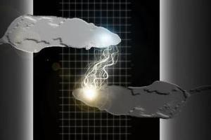 Ποντίκια επικοινώνησαν «τηλεπαθητικά» μέσω διαδικτύου