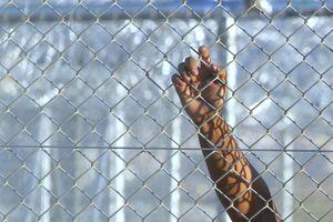 «Δεν θα συλλαμβάνονται οι μετανάστες που μπαίνουν στη χώρα»