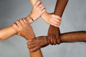 Σεμινάριο για την αντιμετώπιση του ρατσισμού με αναφορές στη Χρυσή Αυγή