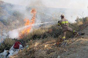 Σε εξέλιξη πυρκαγιά στην Κάρυστο