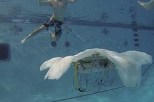 Ρομποτική μέδουσα θα περιπολεί τους ωκεανούς