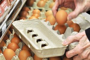 Διεξοδικοί έλεγχοι στην εμπορία αυγών από το Αγροτικής Ανάπτυξης