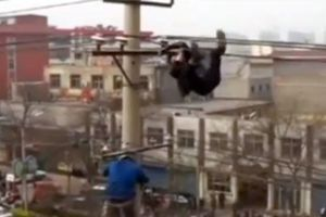 Μεθυσμένος κρέμεται σε καλώδια ηλεκτρικού ρεύματος
