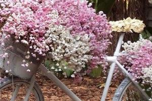 Τα παλιά ποδήλατα μεταμορφώνονται σε... γλάστρες!
