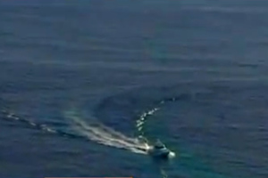 Ζευγάρι έπεσε από κρουαζιερόπλοιο στο Σίδνεϊ