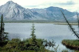 Η Αλάσκα βιώνει ήδη τις επιπτώσεις της κλιματικής αλλαγής