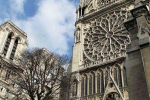 Συγγραφέας ο άντρας που αυτοκτόνησε στο Παρίσι