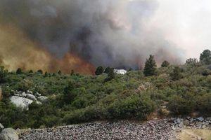 Πυρκαγιά σε αγροτοδασική έκταση στο Μεσολόγγι