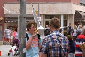 Το… ιπτάμενο παγωτό