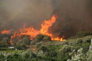 Σε εξέλιξη φωτιά στο όρος Ζήρεια στην Κόρινθο