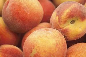 Ελληνικά φρούτα θα φτάσουν στη Μέση Ανατολή