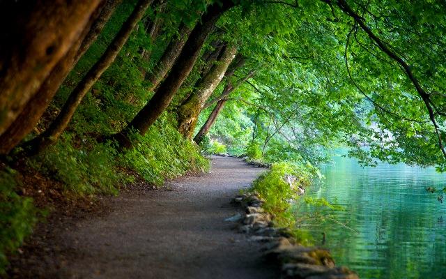 Είναι τα παλαιότερα εθνικά πάρκά στη Νοτιοανατολική Ευρώπη και ένας καταπράσινος δρυμός γεμάτος λίμνες με κρυστάλλινα νερά !Που βρίσκεται;(photo)
