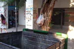Πολίτες αφήνουν τρόφιμα δίπλα από σκουπίδια
