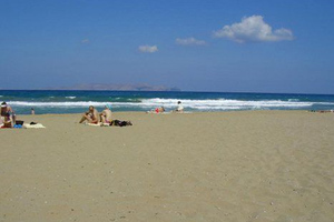 Αυνανιζόταν σε παραλία της Κρήτης