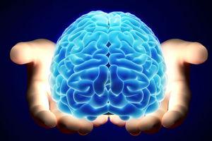 Η διατροφή μπορεί να επηρεάσει τα σήματα του εγκεφάλου