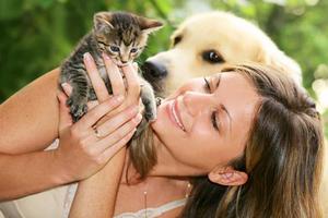 Οι γάτες είναι ο νέος «καλύτερος φίλος του ανθρώπου»