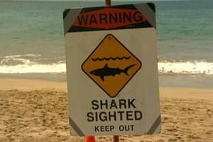 Υπέκυψε στα τραύματά της 20χρονη που είχε δεχθεί επίθεση καρχαρία