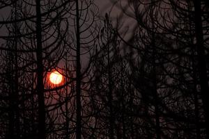 Απειλεί ηλεκτροδότηση και υδροδότηση η μεγάλη φωτιά στην Καλιφόρνια