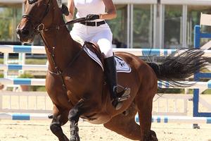 Στην Ιταλία σε επίδειξη ιππασίας η Αθηνά Ωνάση
