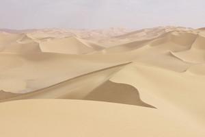 Τεράστια ποτάμια έρεαν στην περιοχή της Σαχάρας