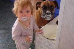 Σκυλιά, παιδιά, γατιά...