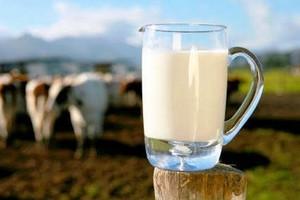 Μπλόκο Ρωσίας στις εισαγωγές ουκρανικών γαλακτοκομικών