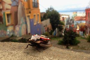 Συσκευή επιτρέπει τον απόλυτο έλεγχο κατσαρίδας μέσω smartphone!